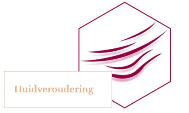 ENVIRON – HUIDVEROUDERING